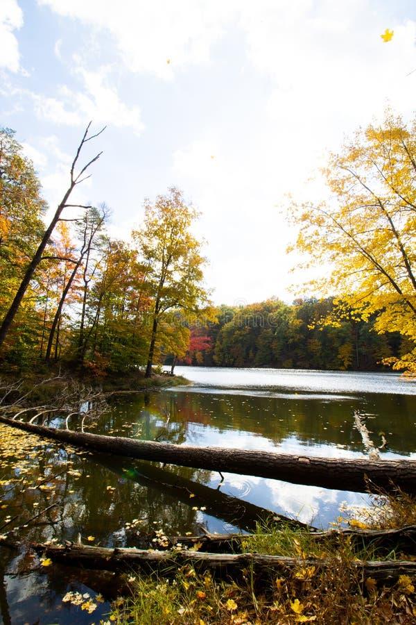 Spadek dalej Oczkuje jezioro, Brown okręg administracyjny stanu park, Indiana obraz stock