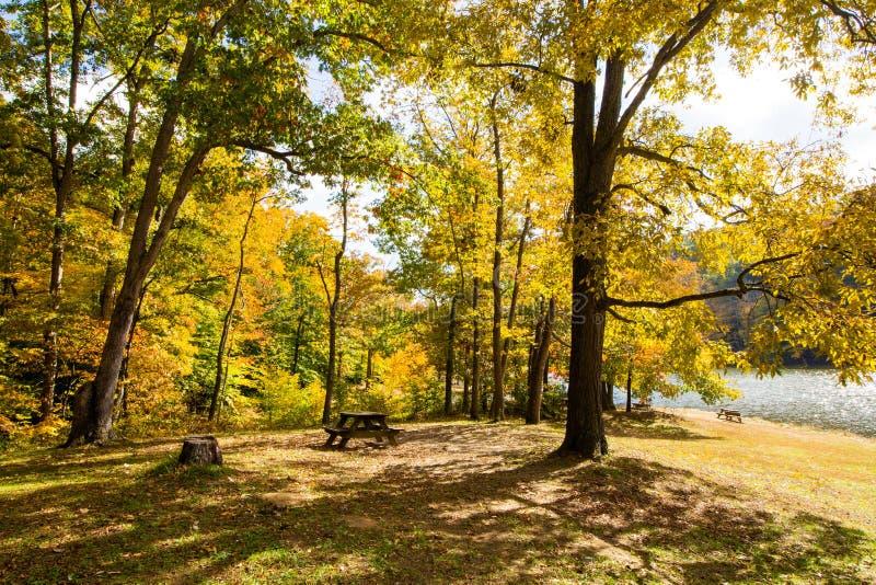 Spadek dalej Oczkuje jezioro, Brown okręg administracyjny stanu park, Indiana fotografia royalty free