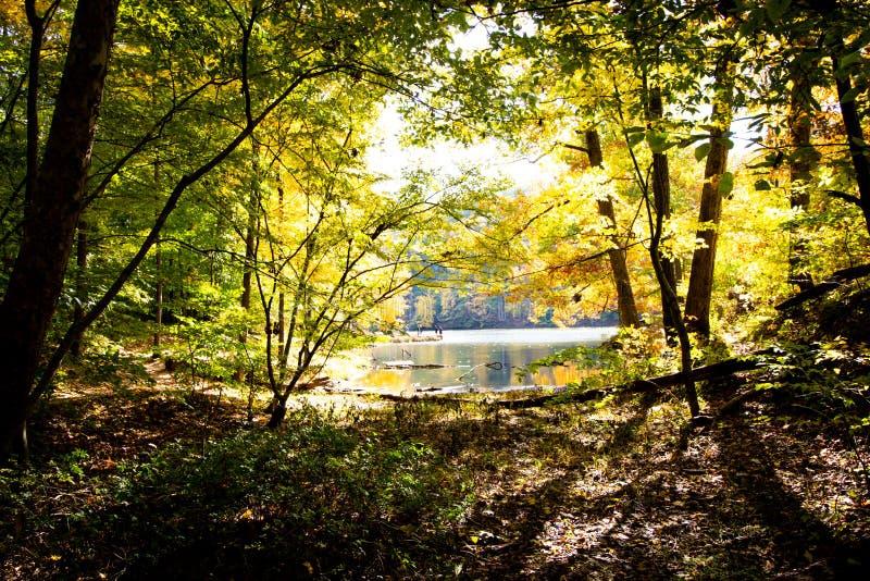 Spadek dalej Oczkuje jezioro, Brown okręg administracyjny stanu park, Indiana obraz royalty free