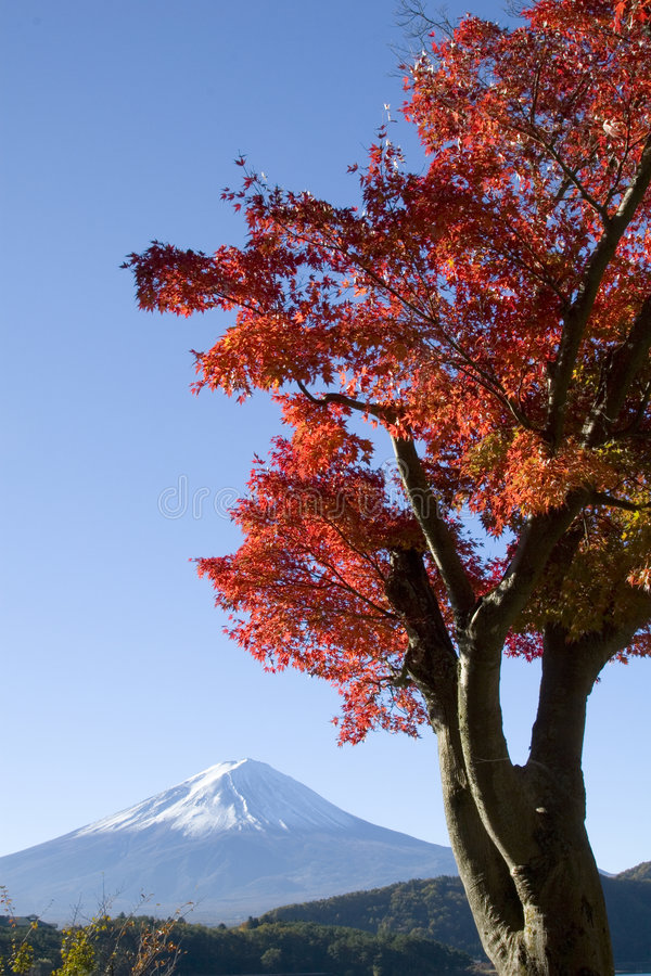 spadek Fuji góra viii obrazy stock