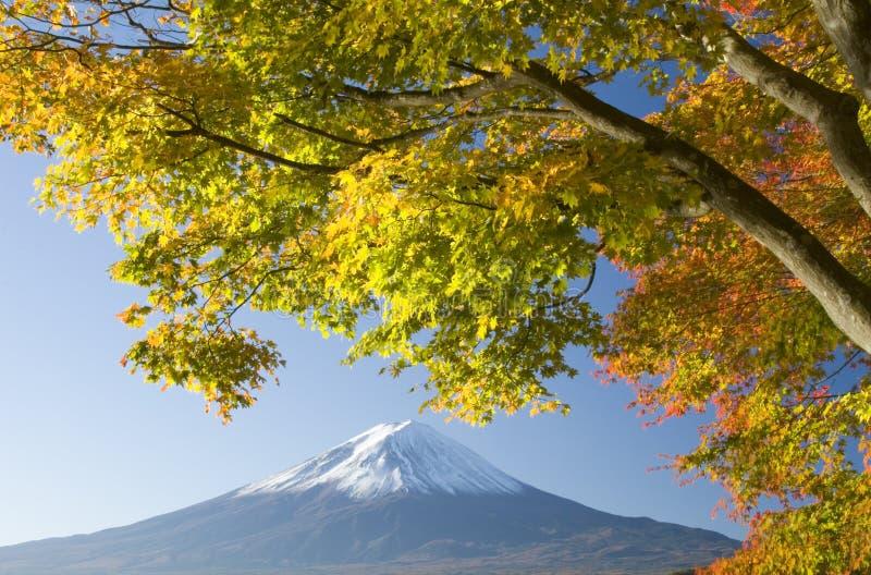 spadek Fuji góra x zdjęcia royalty free