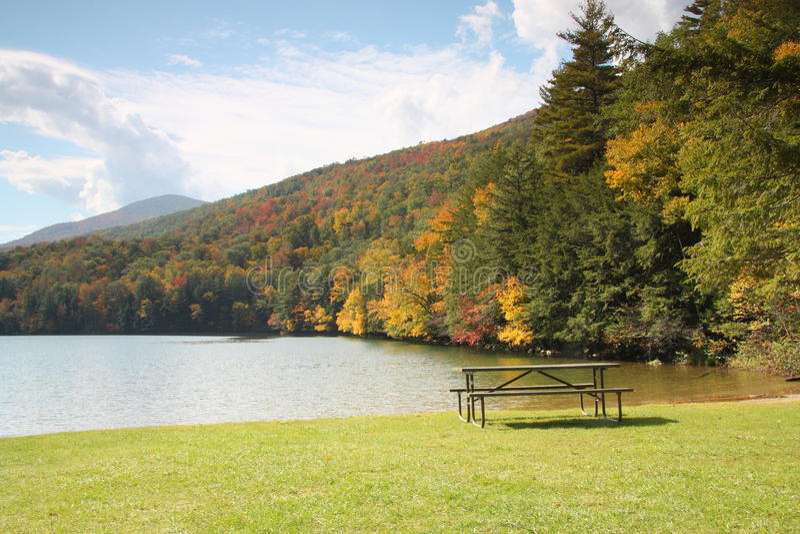 spadek jeziora pinkinu sceny stół zdjęcia royalty free