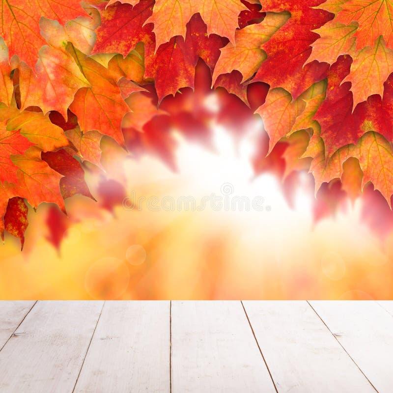 Spadek kolorowy t?o Jesień liście klonowi i abstrakcjonistyczny słońce zaświecają z pustym białym drewnianej deski tłem fotografia stock