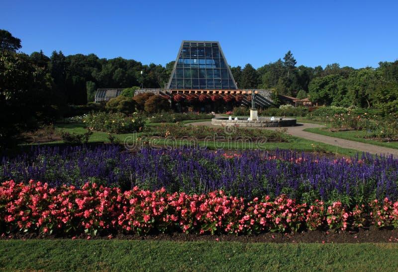 spadek Niagara parkowy stan obrazy royalty free