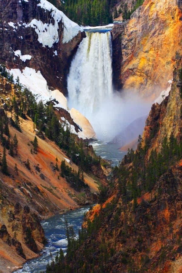 spadek obniżają pionowo Yellowstone zdjęcie royalty free