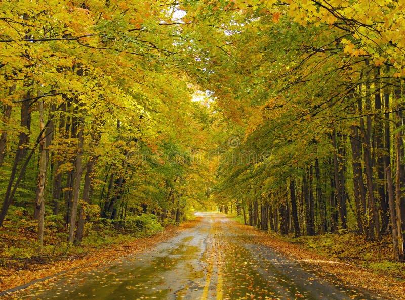 Download Spadek ulica w Michigan obraz stock. Obraz złożonej z autostrada - 28959003