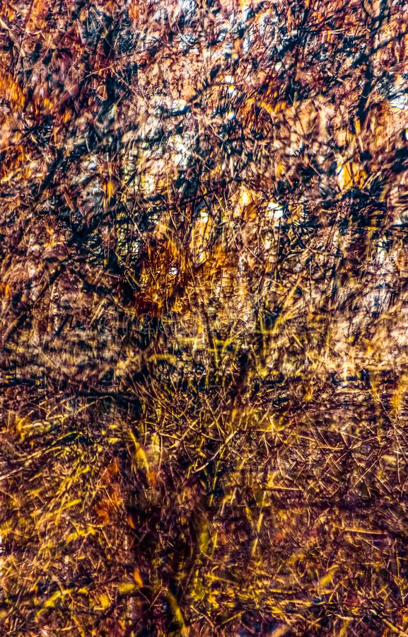 Spadek wspominki Jackson Pollock zdjęcia stock