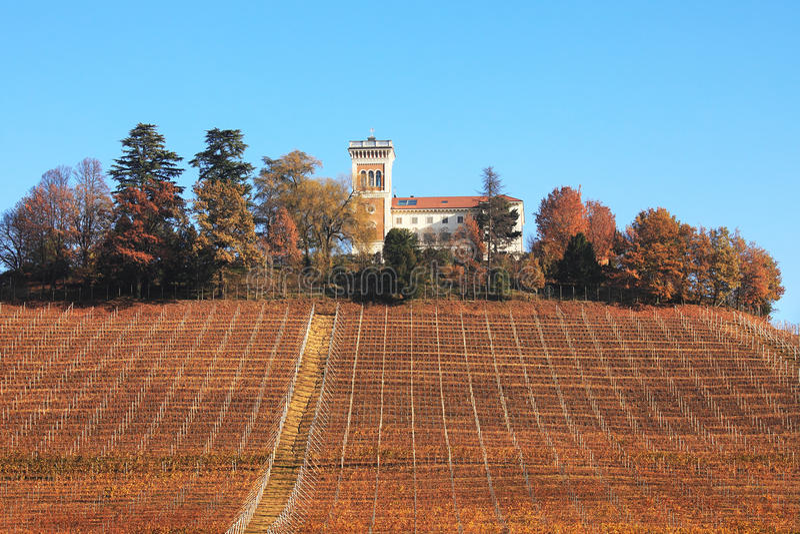 spadek wzgórza Italy północny podgórski winnica obrazy stock