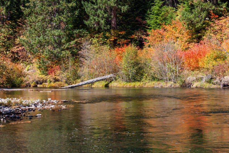 Spadków kolory rzeką zdjęcia royalty free