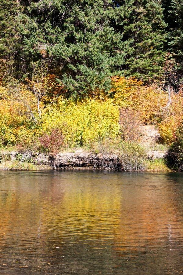 Spadków kolory rzeką obrazy stock