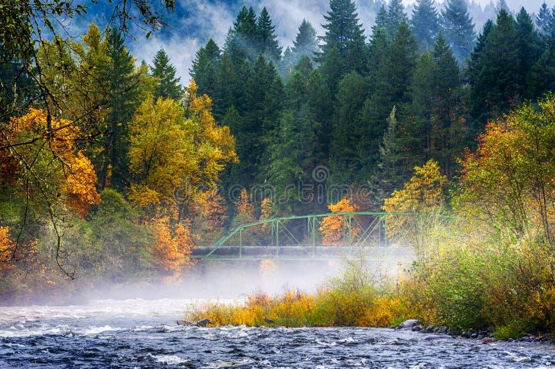 Spadków kolory wzdłuż zbieżności dwa rzeki zdjęcie stock