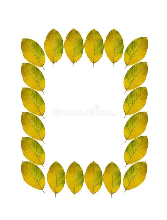 Spadków liści rama zdjęcie stock