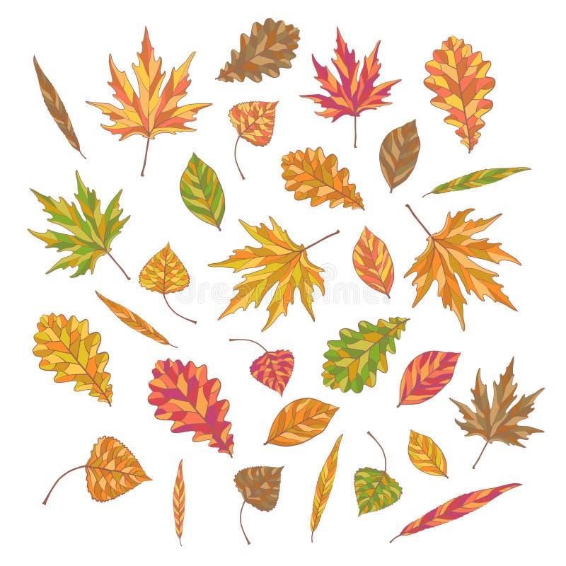 Spadków liście dla twój ornamentacyjnego projekta zdjęcia stock