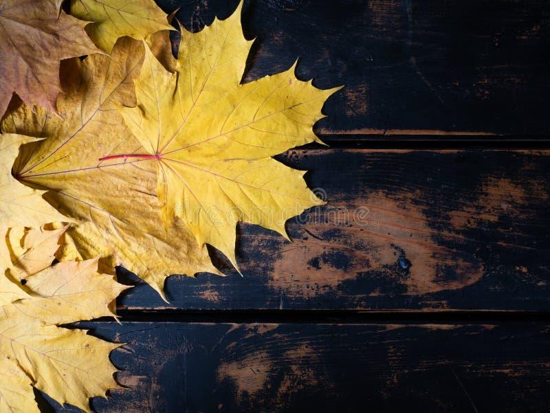 Spadków liście i nieociosany drewniany tło zdjęcie royalty free
