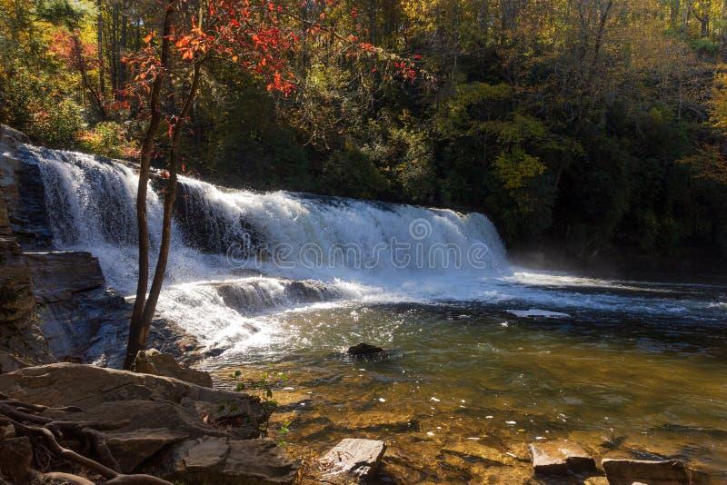 Spadku kolor przy dziwką Spada w Dupont stanu lesie w Pólnocna Karolina obrazy royalty free