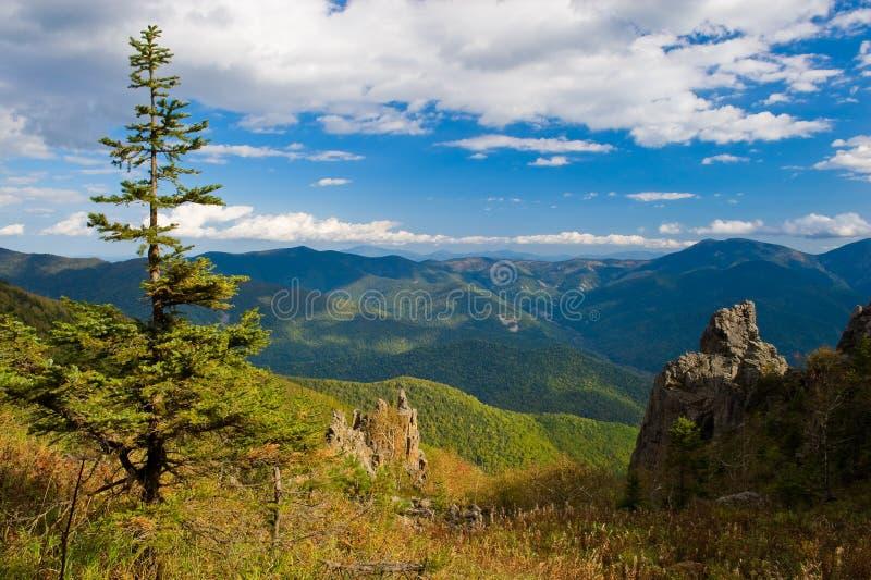 Spadku krajobraz na Olhovaya górze w Primorye zdjęcie royalty free