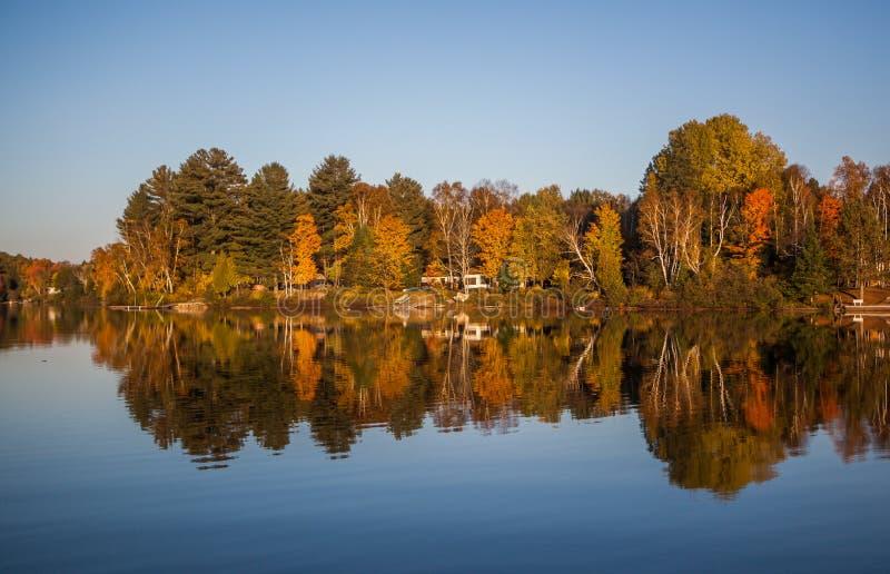 Spadku lasowy odbicie w jeziorze zdjęcie royalty free