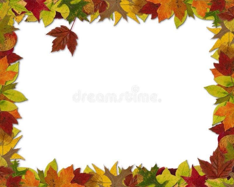 Spadku liścia rama zdjęcie royalty free