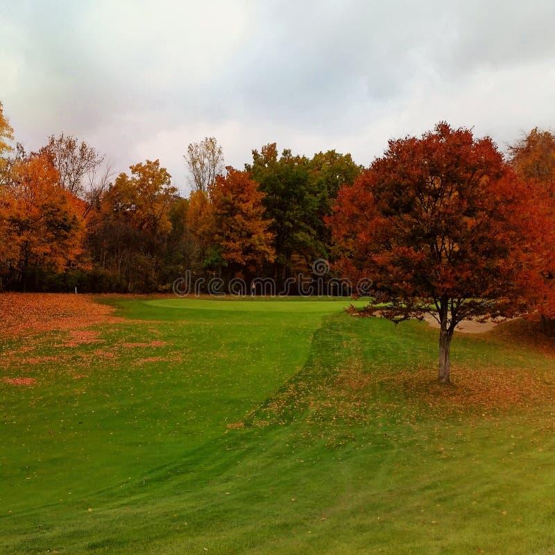 Spadku Michigan golf obraz stock