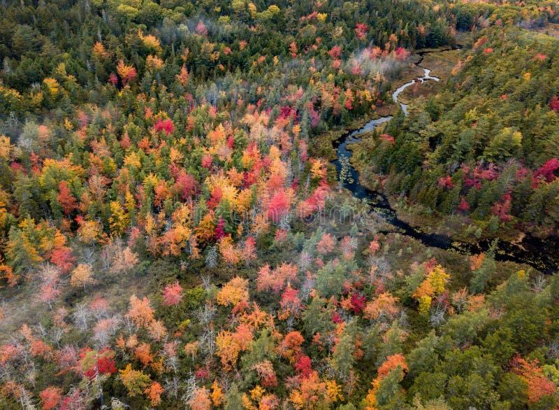 Spadku ulistnienia Acadia park narodowy w jesieni zdjęcia stock