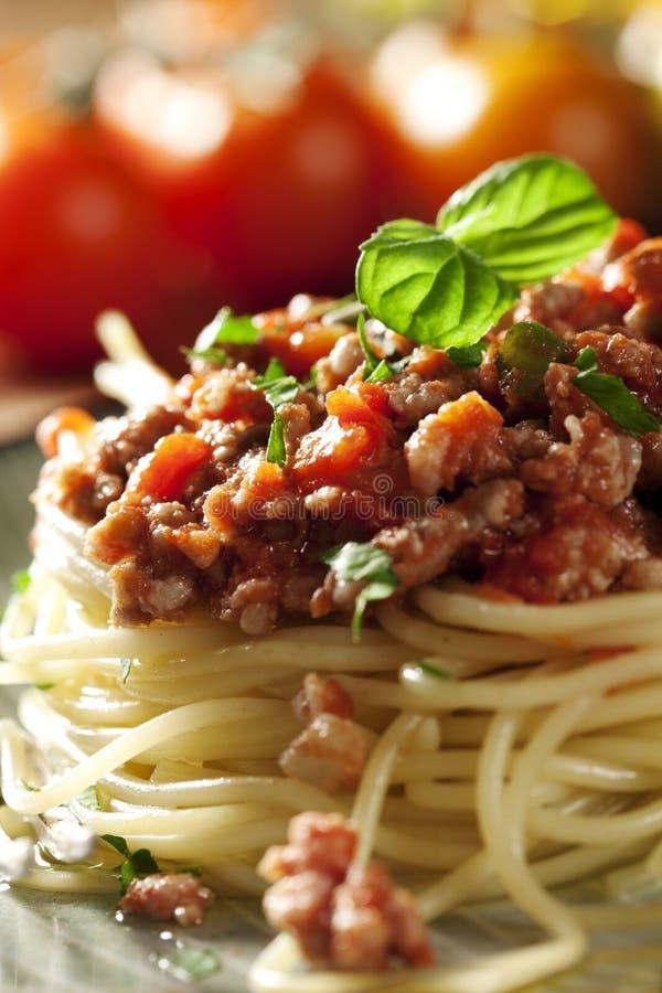 Spaghetti bolognese immagini stock