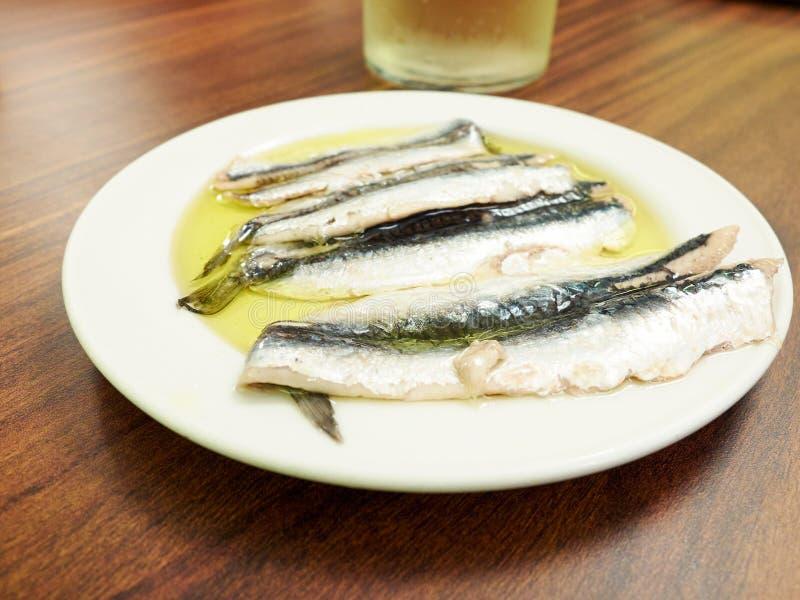 Spagnolo Boquerones (acciughe marinate in olio) fotografia stock