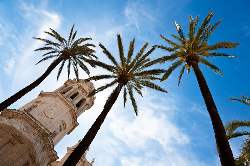 Download Spain, Andalucia, Cadiz stock photo. Image of cathedral - 19399438