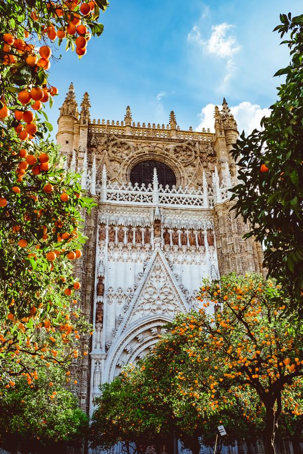 Free Spain, Andalusia, Seville, The Cathedral Bell Tower Seen From The Orange Tree Courtyard Royalty Free Stock Photos - 147177978