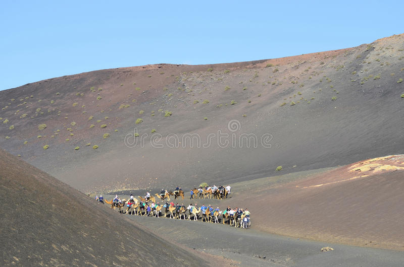 Spain, Canary Island stock images
