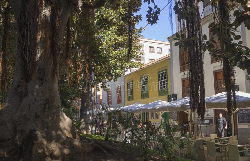 Spain, Canary islands, Tenerife, Santa Cruz de Tenerife, December 27, 2017: street in city center with huge fig. Tree, coloful houses and restaurant tables royalty free stock photo