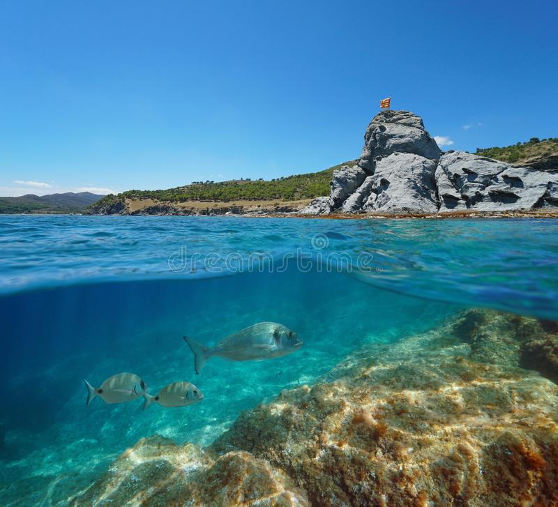 Spain coastline rocky islet and fish underwater royalty free stock photo