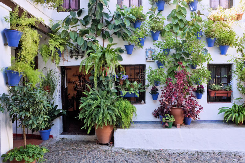 Spain Cordoba The Patios. Spain Cordoba In May all the flowery courtyard of Cordoba participates in a contest stock photos