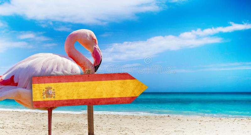 Spain flag on wooden table sign on beach background with pink flamingo. There is beach and clear water of sea and blue sky in the. Background. It is tropical stock image
