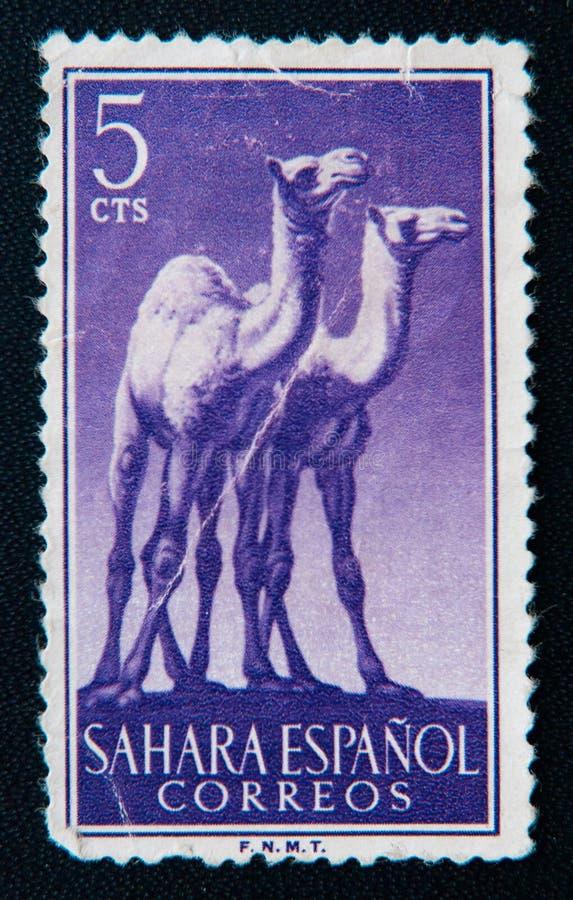Spain stamp shows two giraffe. Circa 1964 stock image