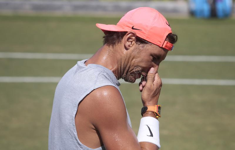 Rafa nadal gestures during a training session in santa ponsa mallorca. Spain tennis player Rafa Nadal gestures during a training session in grass court to royalty free stock images