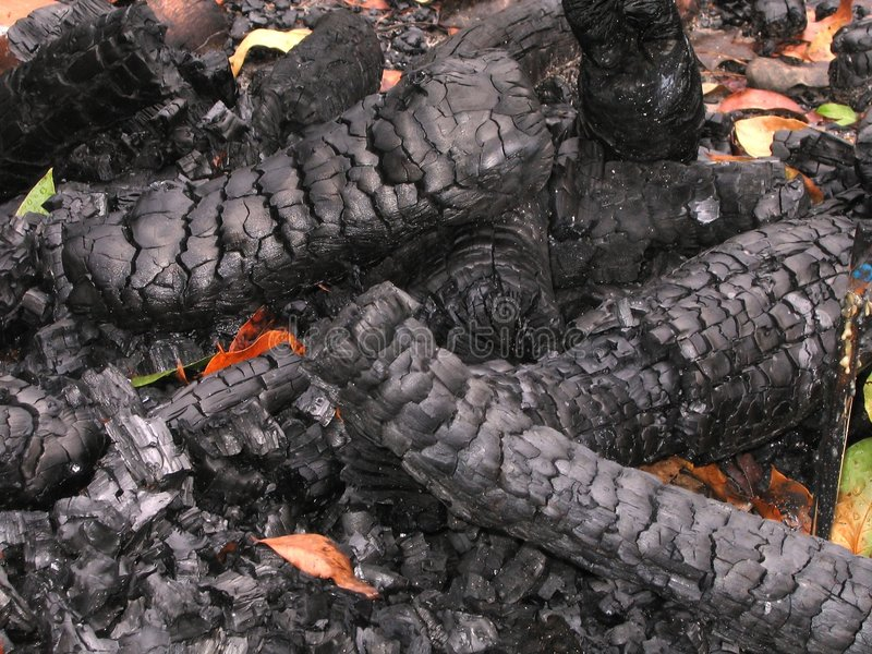 spalić kłody drewna obraz stock