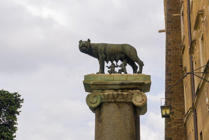 Spalte Roms, Italien mit Capitoline-Wolfstatue lizenzfreies stockbild