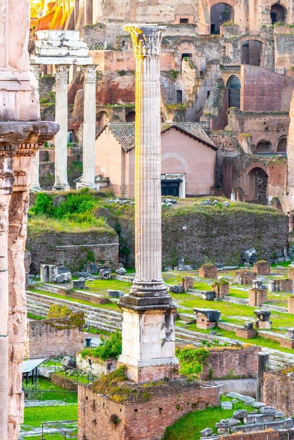 Spalte von Phocas in archäologischer Fundstätte Roman Forums, Rom, Italien lizenzfreie stockbilder