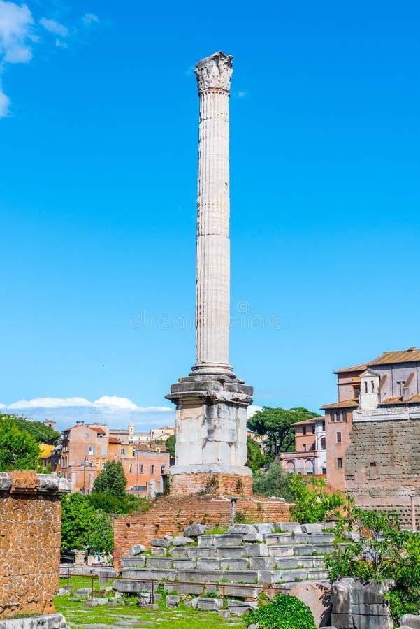 Spalte von Phocas in archäologischer Fundstätte Roman Forums, Rom, Italien lizenzfreies stockfoto