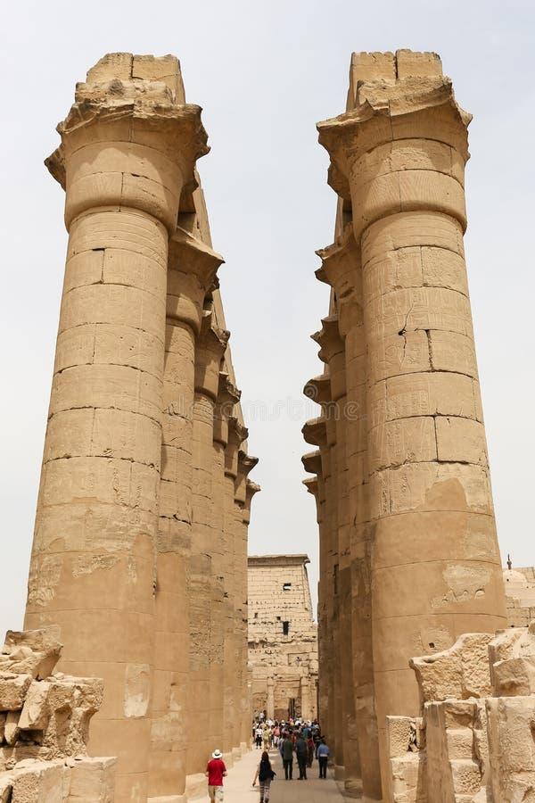 Spalten im Luxor-Tempel, Luxor, Ägypten stockfoto