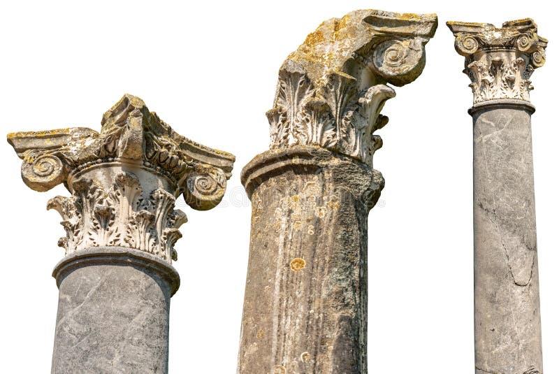 Spalten mit den Hauptst?dten in der korinthischen Art lokalisiert auf Wei? lizenzfreie stockbilder