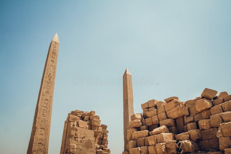 Spalten mit Hieroglyphen in Karnak-Tempel in Luxor, ?gypten Reise lizenzfreies stockbild