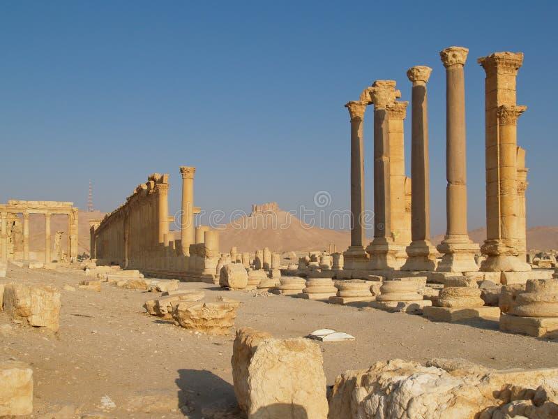 Spalten von Ruinen am alten Palmyra, Syrien stockfotografie