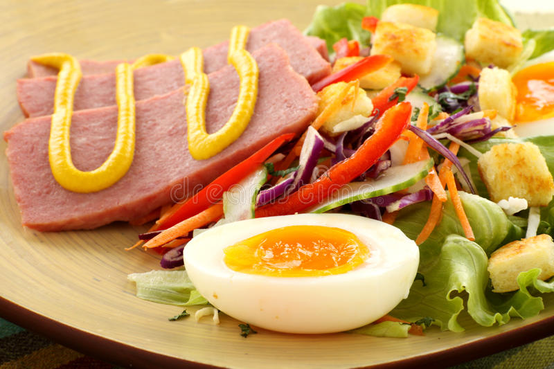 Spam And Salad royalty free stock photo