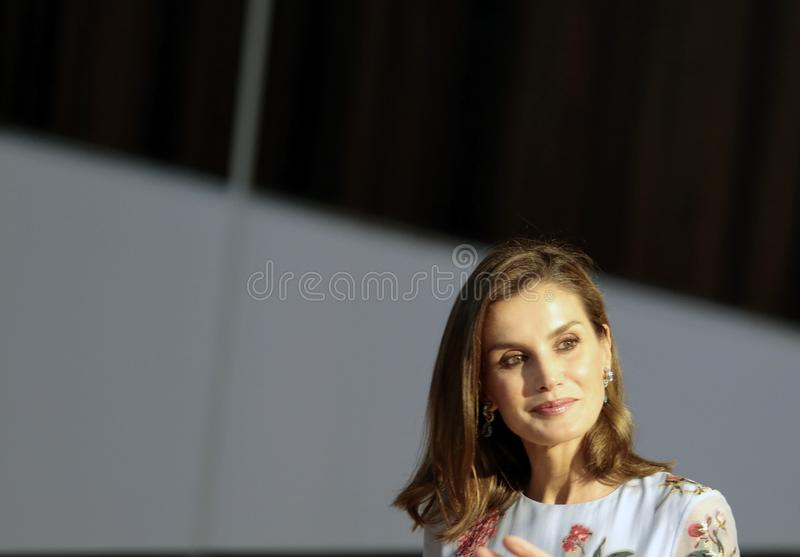 Spanien drottning Letizia royaltyfri fotografi