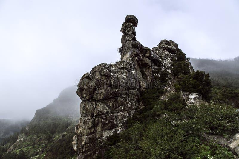 Spanien, La Gomera, ett gå paradis och UNESCObiosfärreserv royaltyfria foton