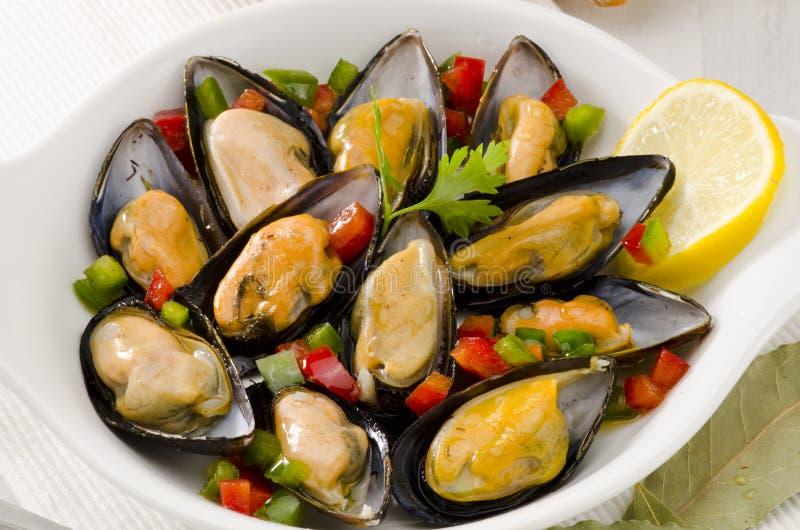 Spanische Küche. Miesmuscheln in der Soße. Mejillones ein La Marinera. lizenzfreie stockbilder