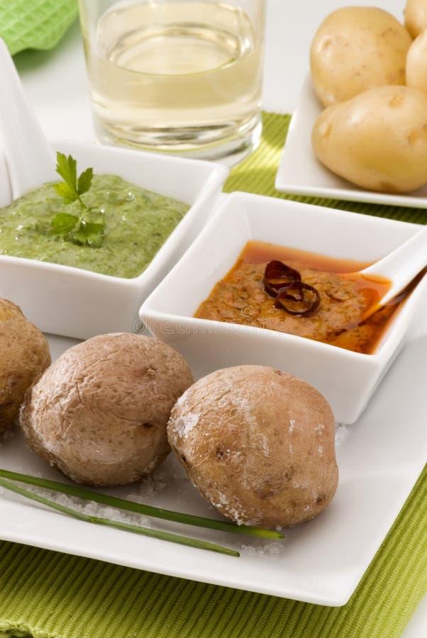 Spanische Küche. Rote und grüne mojo Soße. lizenzfreies stockfoto