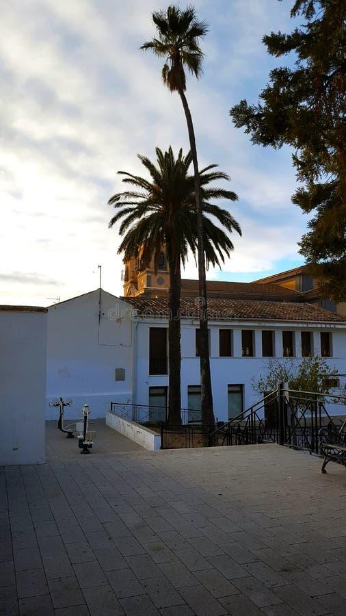 Spanische Piazza, Quadrat mit Palmen und Kirche stockfoto