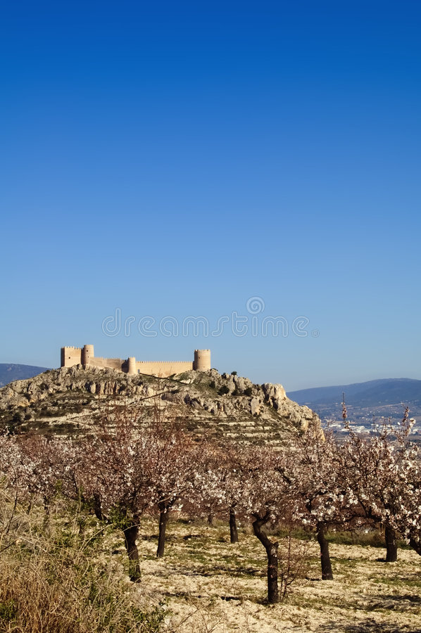 Spanisches Schloss mit dem Mandelbaumblühen stockbild